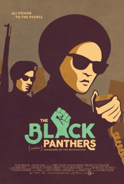 blank_panthers